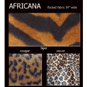 Africana Color Card