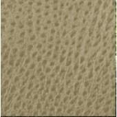 Stone Emu Polyurethane