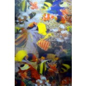 "Lenticular Sheets 14 1/2"" x 19"" - Little Fish 3D"