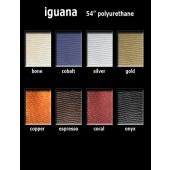 Iguana Color Card