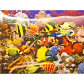 3-D Aquarium Lenticular Sheet
