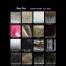 Fun Fur 1 Solid Patterns